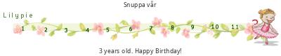 Lilypie Third Birthday tickers